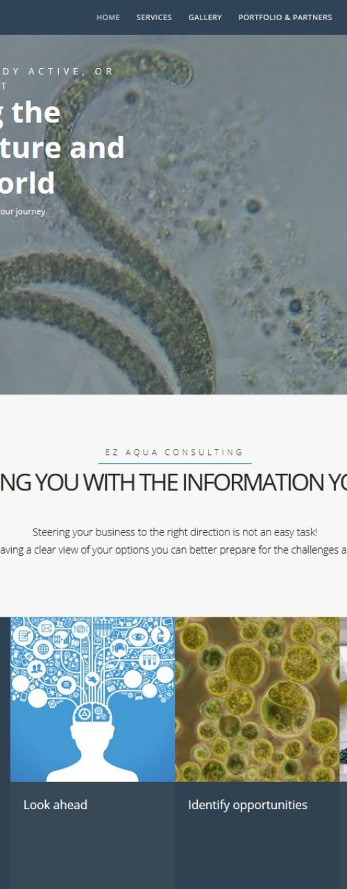 EZ Aqua Consulting – Website