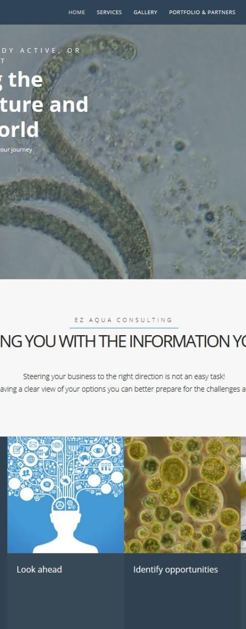 EZ Aqua Consulting – Website
